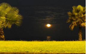 Imagen de puesta de Luna llena, hay veces confundida con puesta de Sol